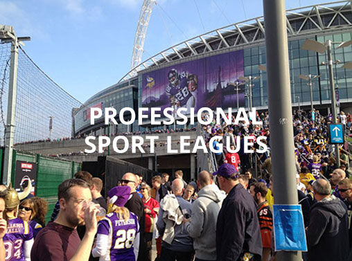 Professional Sport Leagues