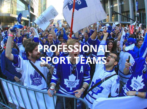 Professional Sport Teams